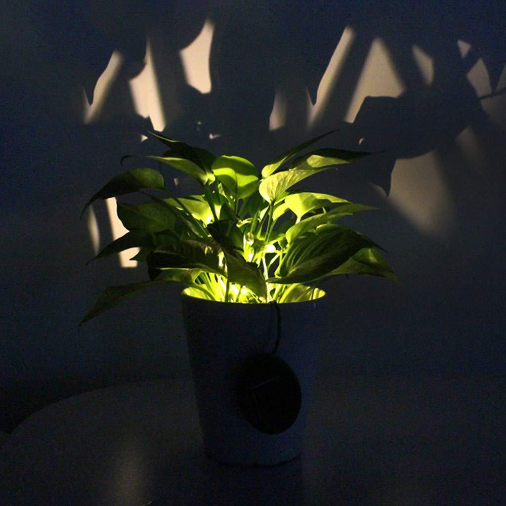 お気に入り Dirance @ @ Dirance 防水LEDソーラーガーデン芝生ランプ フェンス街灯装飾ランプ 2個 2個 B07PPDLX5Z, 嬬恋村:cc197109 --- a0267596.xsph.ru