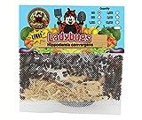 150 Live Ladybugs - Good Bugs - Ladybugs