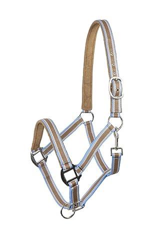 unterlegt hellblau PFIFF Kunststoffhalfter Vollblut Pferdehalfter Halfter