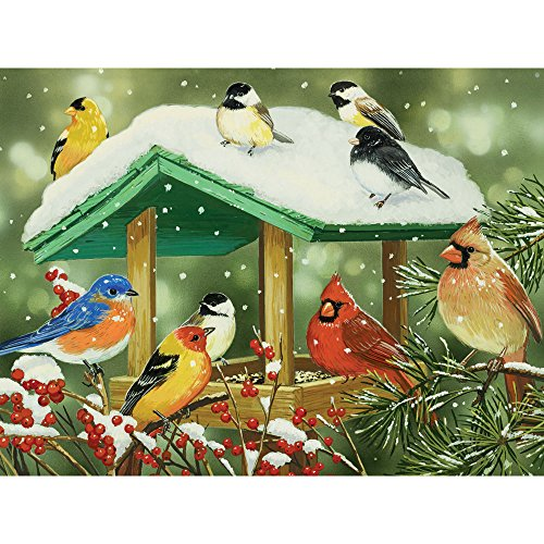 Bits and Pieces - 500 Piece Jigsaw Puzzle for Adults - Winter Treats - 500 pc Birds Jigsaw by Artist William Vanderdasson (Bits Bird Treats)