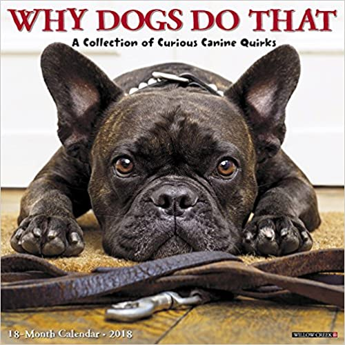Bittorrent Descargar Español Why Dogs Do That 2018 Wall Calendar PDF Gratis En Español