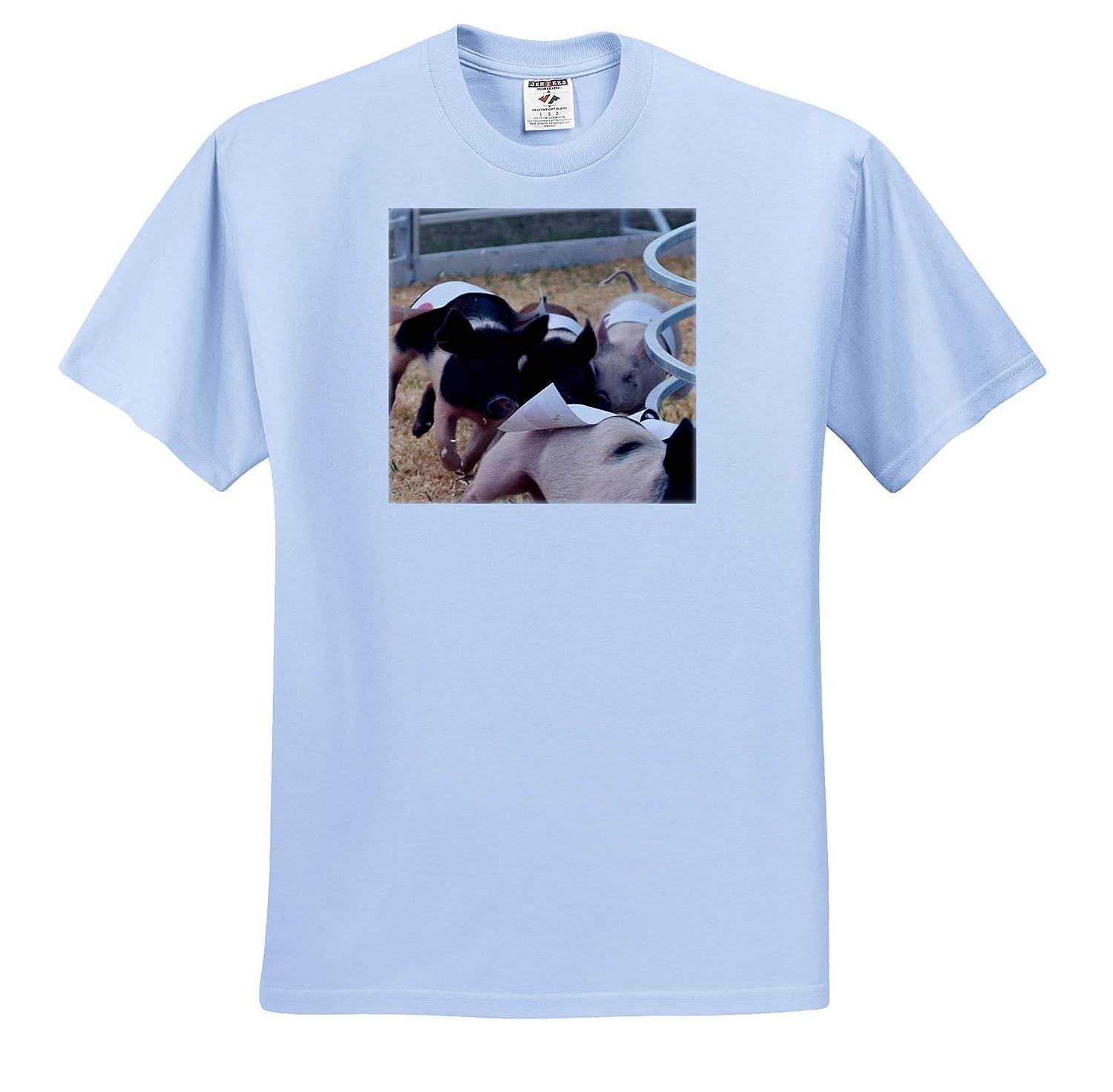 T-Shirts Pig Races Piggies Racing 3dRose Susans Zoo Crew Animal
