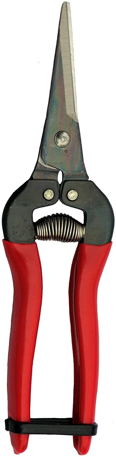 ARS HP-300L Needle Nose Fruit Pruners