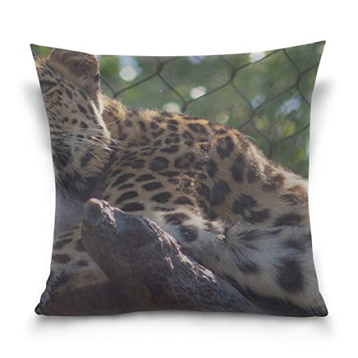 Hectwya Funda de Almohada Leopard Big Cat Predator Sofa Bed ...