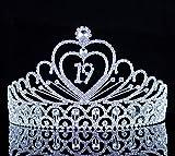 Janefashions 19-Year-Old Birthday Party Austrian Rhineston Tiara Crown Hair Combs T892 Silver
