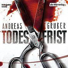 Todesfrist (Sneijder & Nemez 1) Hörbuch von Andreas Gruber Gesprochen von: Achim Buch