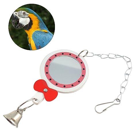 UEETEK Ornamento colgante de la jaula de pájaro del juguete del ...