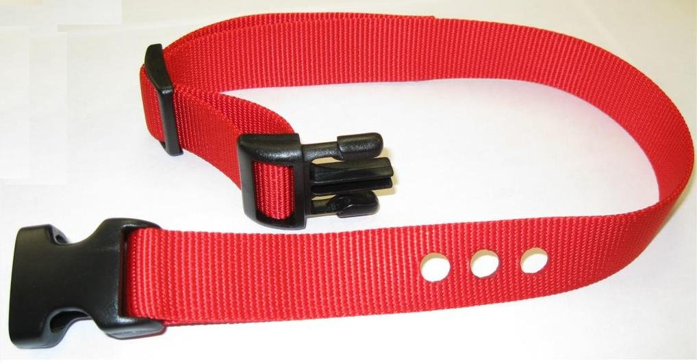 "Grain Valley 1"" Replacement Strap, Color: Red. Sold Per Each. Fits Most PetSafe Bark Collars and Many Containment Collars. (No-Bark Collars / Accessories)"