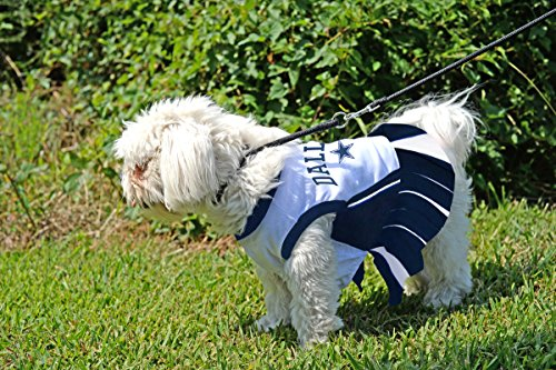 Amazon.com   Dallas Cowboys NFL Cheerleader Dress For Dogs - Size Medium    Sports Fan Pet Dresses   Pet Supplies 6e0ee1203