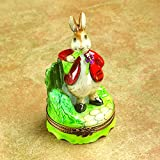 Authentic French Hand Painted Limoges Porcelain Peter Rabbit Box with Carrot