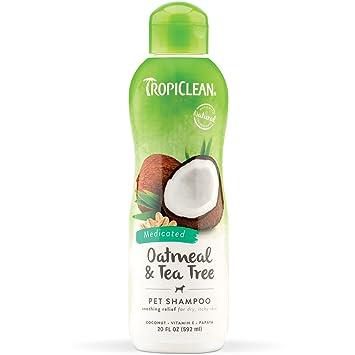 TROPICLEAN - Champú Champú de harina de avena, 20 oz/592 ml: Amazon.es: Productos para mascotas