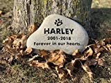 Natural Pet Memorial Stone, Personalized, Portrait