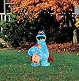 ProductWorks 24-Inch Pre-Lit Sesame Street Cookie Monster Halloween Yard Decoration