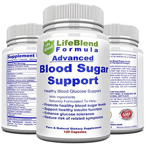 Blood Sugar Support -120 Caps- with Alpha Lipoic Acid & Cinnamon | 20 Herbs & Multivitamins - Formula Diabetic Support