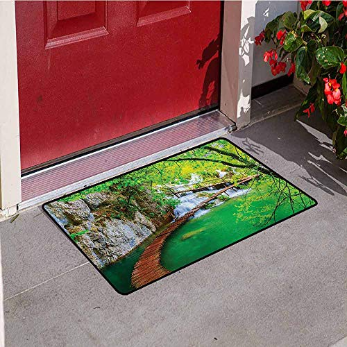 Jinguizi Waterfall Front Door mat Carpet Cascade Path Over The Lake by The Waterfall and Hills Mother Nature Theme Idyllic Machine Washable Door mat W29.5 x L39.4 Inch Green - Cascade Foyer
