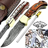 "Pocket Knife Red Wood 6.5"" Damascus Steel Knife Brass Bloster Back Lock Folding Knife 100% Prime Quality + Camel Bone Stainless Steel Small Pocket Knife +Sharpening Rod Pocket Knives Review"