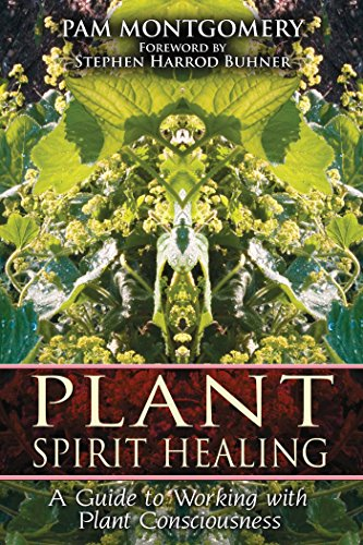 Plant Medicine (Plant Spirit Healing: A Guide to Working with Plant Consciousness)