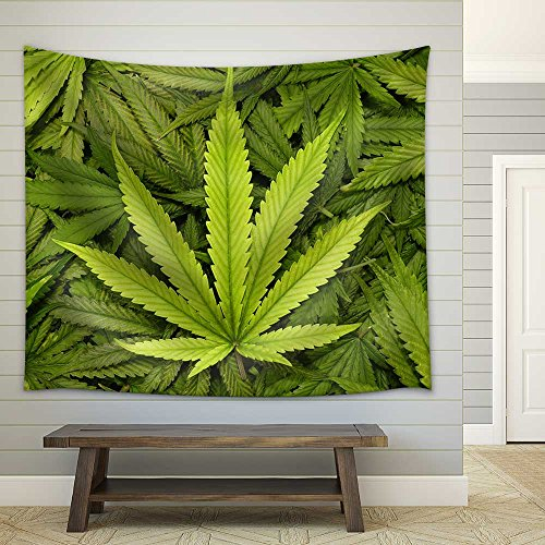 Big Marijuana Leaf Close Up with Texture Background of Cannabis Leaves - Fabric Wall Tapestry