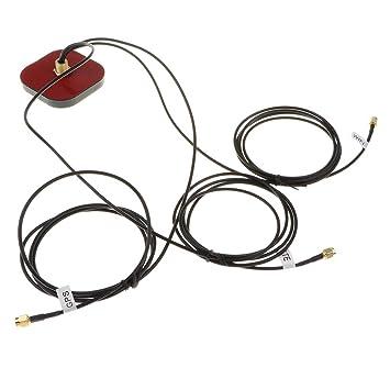Homyl Amplificador de Señal Exterior Repetidor Exterior 4G LTE de Señal de Teléfono Móvil Portátil Tamaño: Amazon.es: Electrónica