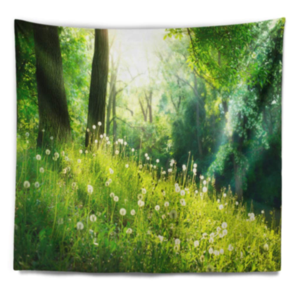 x 50 in Large: 60 in Designart TAP14275-60-50 Beautiful Green Grass and Trees Landscape Blanket D/écor Art for Home and Office Wall Tapestry Created On Lightweight Polyester Fabric