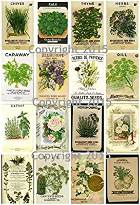 Victorian Vintage Seed Pack Herbs Collage Sheet