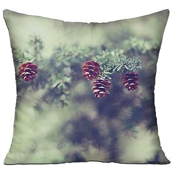 Amazon.com: Encantador piñotas de moda decorativo, para el ...