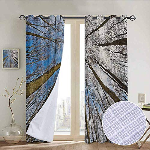 "NUOMANAN Thermal Insulated Blackout Curtain Nature,Skyward Image of Leafless Twiggy Tree Trunk Cloudy Morning Light Nature Outdoor,Blue Brown,Blackout Draperies for Bedroom Living Room 84""x84"""