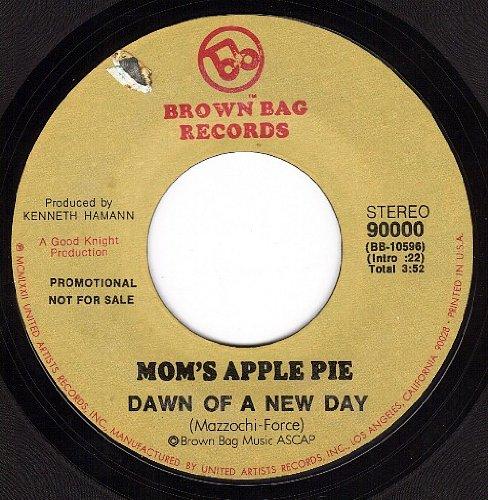 mom apple pie - 8
