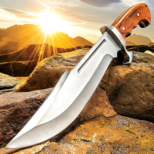 Ridge Runner Woodland Reverie Bowie/Fixed Blade Knife - Stainless Steel, Full Tang - Genuine Zebrawood - Nylon Sheath - Collecting, Field Use, Display and More - 13 1/4""