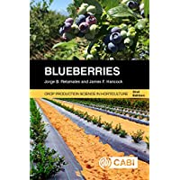 Blueberries 2nd (Agriculture)