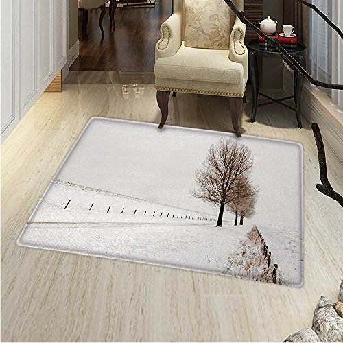 Rustic Print Area Rug Row Large Bare Beech Trees in Snow Covered Winter Frozen Photography Art Perfect Any Room, Floor Carpet 4'x6' White Brown -