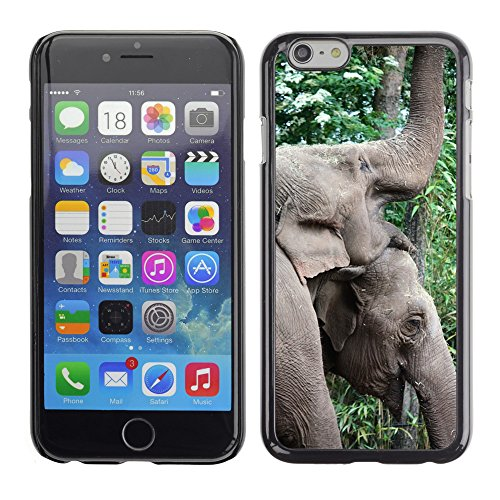 Just Phone Cases Hard plastica indietro Case Custodie Cover pelle protettiva Per // M00127722 Elephant Pachyderme Zoo animaux Grand // Apple iPhone 6 PLUS 5.5""