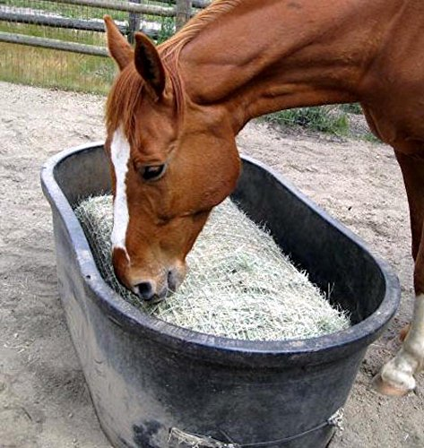 Little Giant Foal Pony Horse Easy Access Grain Feeder Blue 9 Qt Adjustable Bar