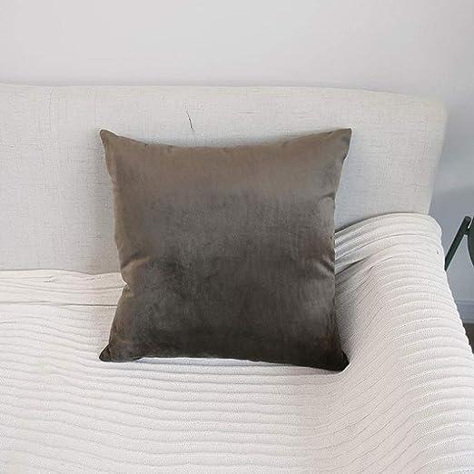 Q-HL Cojín, Simple Modern Velvet Sofá de Color sólido Abrazo ...