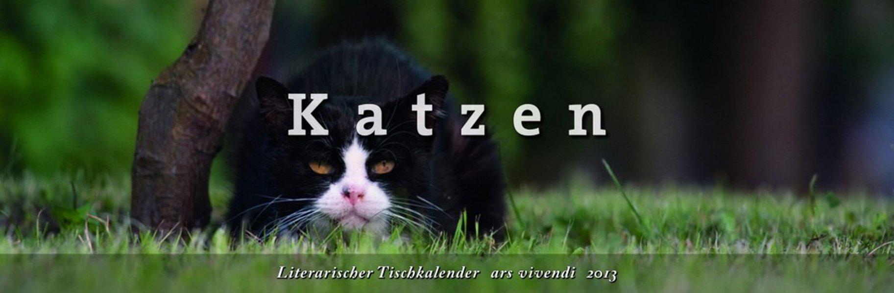 Literarischer Tischkalender Katzen 2013