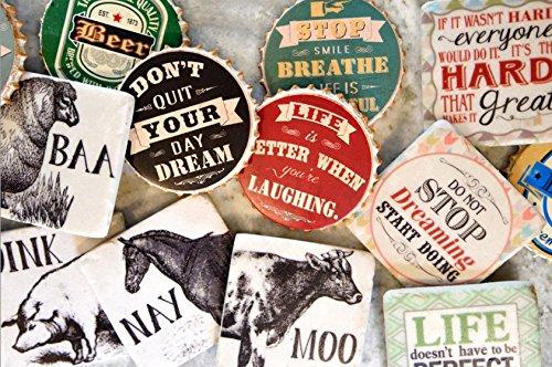 Boston International Resin Coasters, Square-Shaped, Set of 4, Farm Animals
