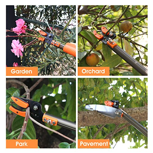 Finether Telescopic Pole Saw Long Reach Pole Pruner Lightweight Tree Trimmer with Bypass Pruner, Saw Blade, Guide Rod |Work Gloves for Free | Extends from 4.6 to 10.2 ft by Finether (Image #4)