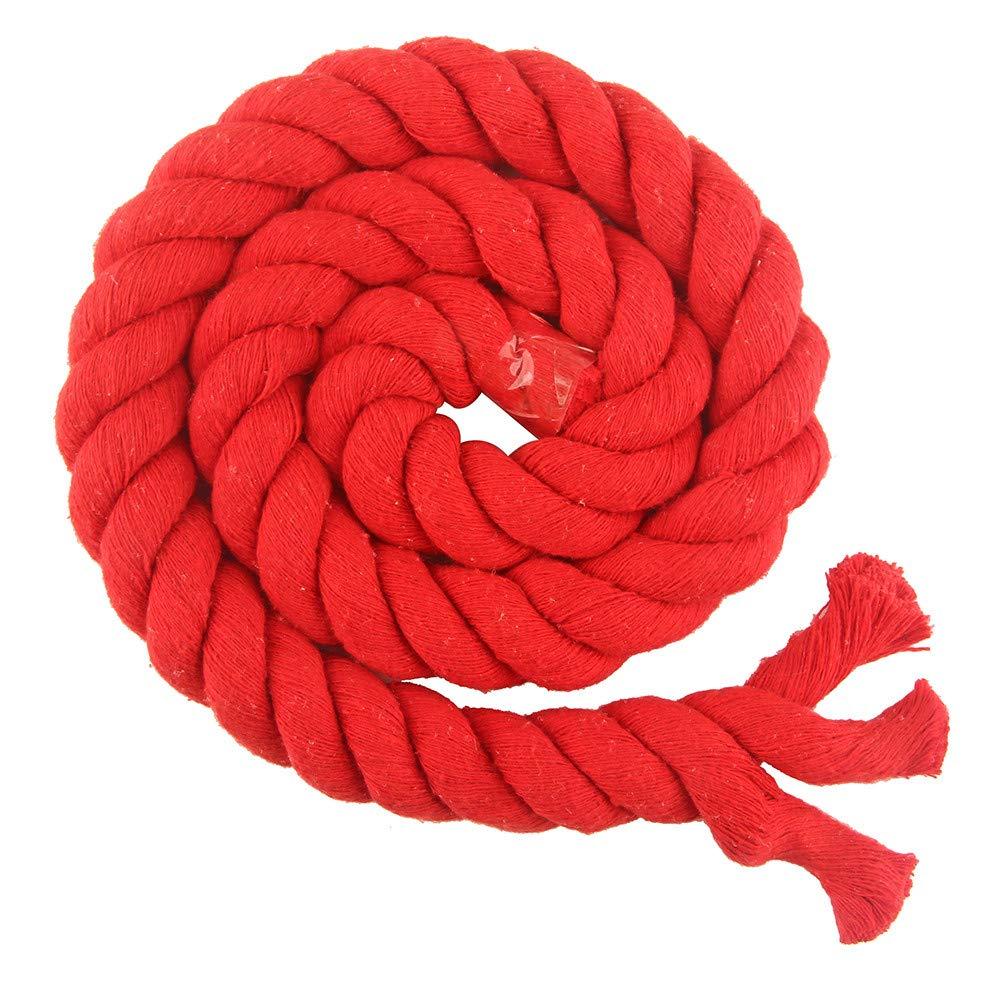 Ribbon Family 20 Farben gedrehtes Baumwollseil, natü rliche Dicke Kordeln fü r Aufbewahrungskorb, Gewebtes Kinderzimmer, Geschenkkorb oder handgefertigtes Dekorationszubehö r 10 m (20 mm, Rot) DILI