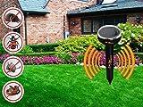 Solar Exterminator mole Repellent, Sonic Solar repellents, Water Resistant, Fights Off Gophers, Voles, Snakes, Shrews