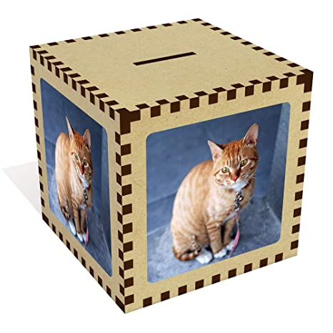 Azeeda Grande Gato Anaranjado Caja de Dinero / Hucha (MB00006252)