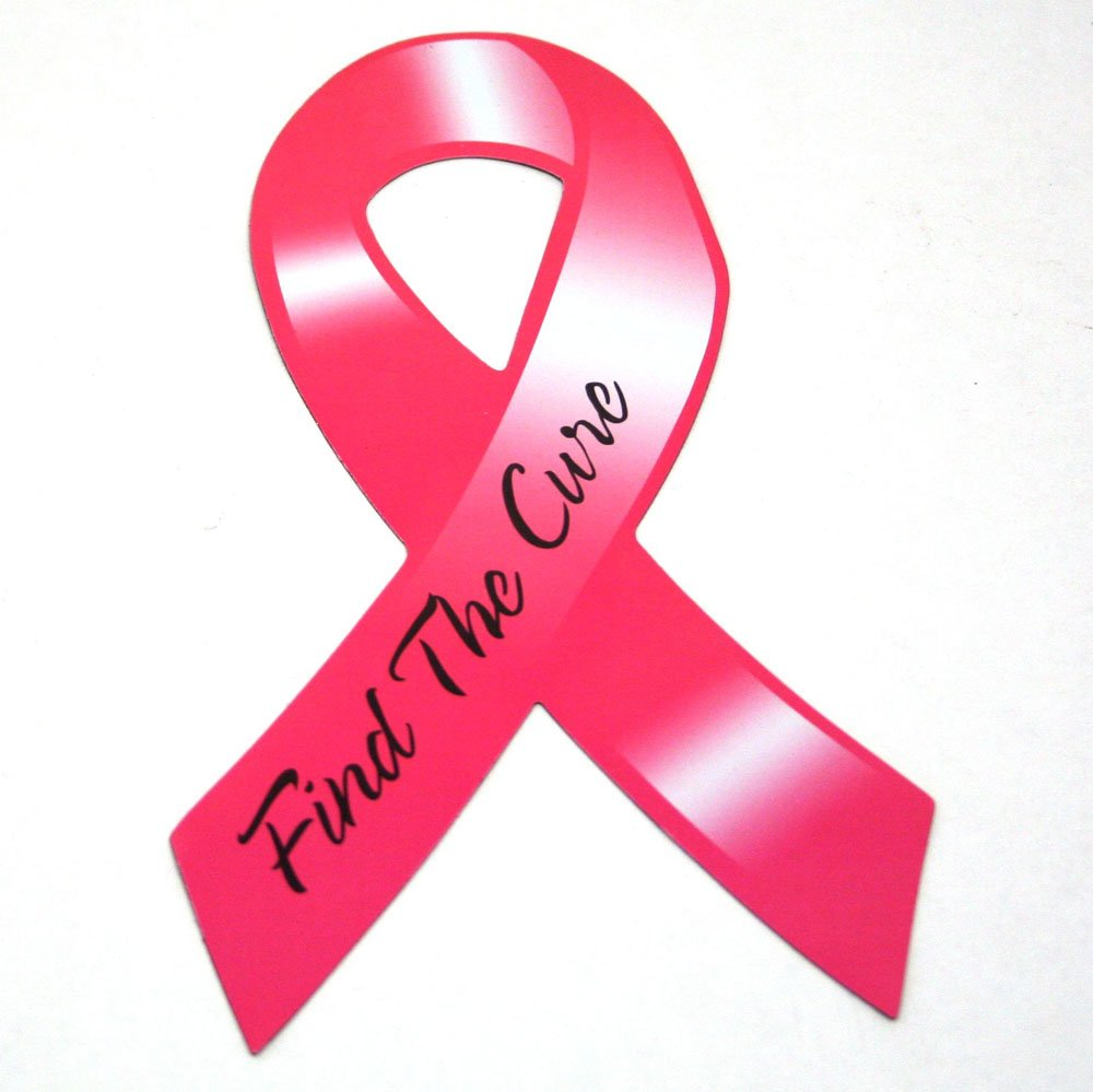 Amazoncom Breast Cancer Awareness Pink Ribbon Car Magnets 12 Pack
