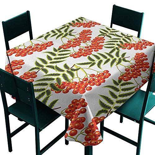 Sunnyhome Square Table Cloth Rowan Vibrant Red Berries Mountain Ashes Pattern Rural Nature Garden Theme for Events Party Restaurant Dining Table Cover 54x54 Inch Scarlet Olive Green ()