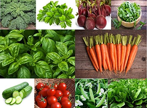 grandmas-vegetable-and-herb-garden-organic-seed-kit-10-different-variety-packs-easy-to-grow