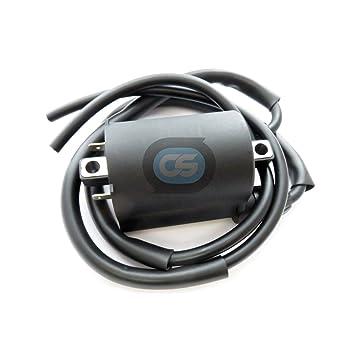 Amazon.com: Ignition Coil for Kawasaki NINJA ZX-9R ZX9R ...
