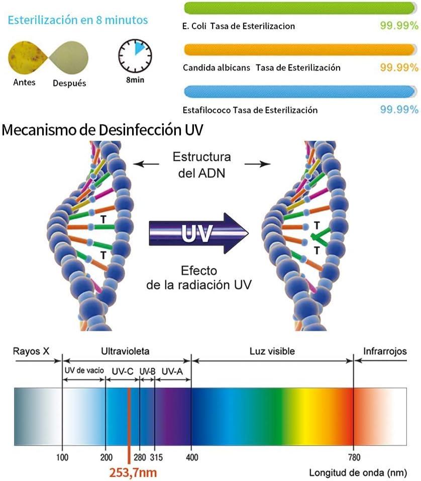 Eliminación de bacterias y virus con tecnología UV