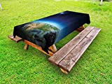 Ambesonne Earth Outdoor Tablecloth, North America Continent on Globe Earth Galaxy Milky Way Realistic View, Decorative Washable Picnic Table Cloth, 58 X 104 inches, Indigo Pale Blue Green