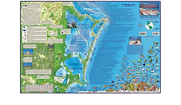 Amazon.com : Cancun & Riviera Maya Mexico Dive Map Laminated ... on cancun maps printable, cancun clubs map, riviera cancun map, cancun map and attractions, the royal cancun map, punta cana hotel zone map, secrets cancun map, cancun downtown map, villa del palmar cancun map, cancun hotel map 2014, riu cancun hotel map, cancun restaurants, cancun hotel map locator, riviera maya hotel zone map, cancun hotel map 2015, cancun hotel district map, cancun area map, cancun all inclusive resorts, paradisus cancun map, cancun city map,