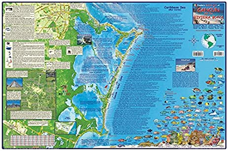 cancun riviera maya mexico dive map laminated poster by franko maps