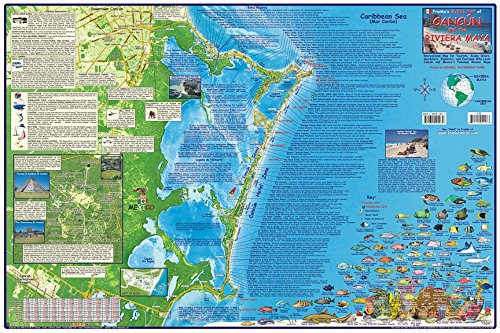 Cancun & Riviera Maya Mexico Descend Map Laminated Poster By Franko Maps
