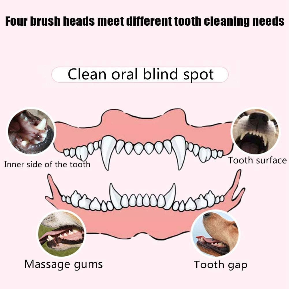 Removes Surface Stains Frequency Sonic 30K Vibration For Small Medium Large Dogs And Cats Optimal Professiona Tooth Cleaning And Dental CMmin Tooth Polisher /& Whitener By
